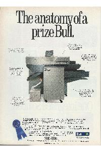 Bull - The anatomy of a prize Bull